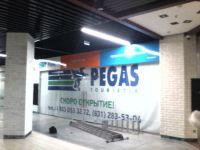 Вывеска Пегас туристик